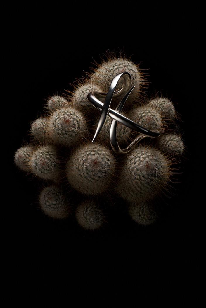 VO+ – Cactus